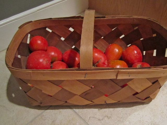 Tomatoes, The World's Favorite Fruit