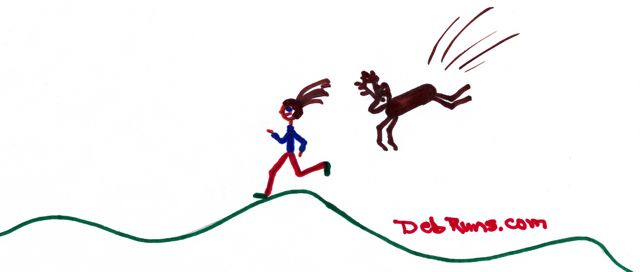 Look Out For That Flying Deer; And What's The Difference Between A Runner And A Jogger?
