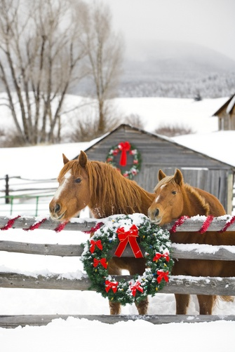 HorsesAndWreath