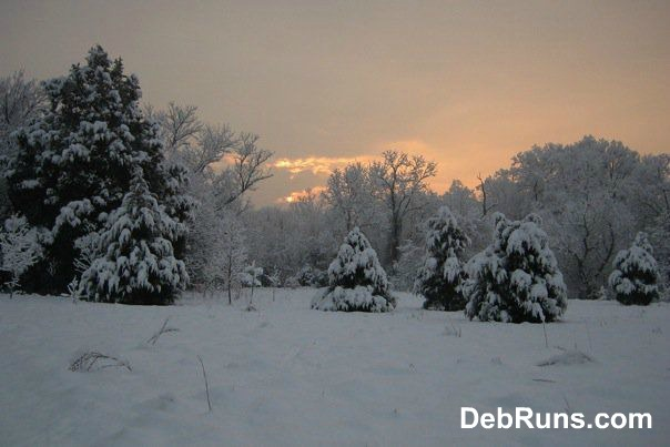 Winter Running Tag