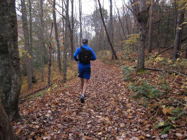 Trail Running To Our Favorite Summit, Molly's Knob
