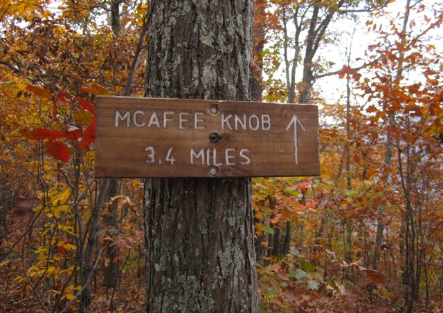 McAfee Knob Trail Run – Hope You Like Pictures!