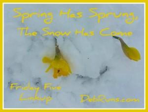Spring Has Sprung, The Snow Has Come