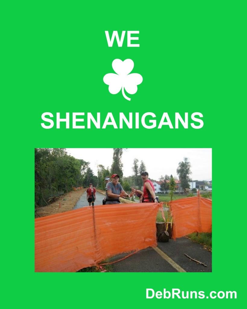 Let The Shenanigans Begin!
