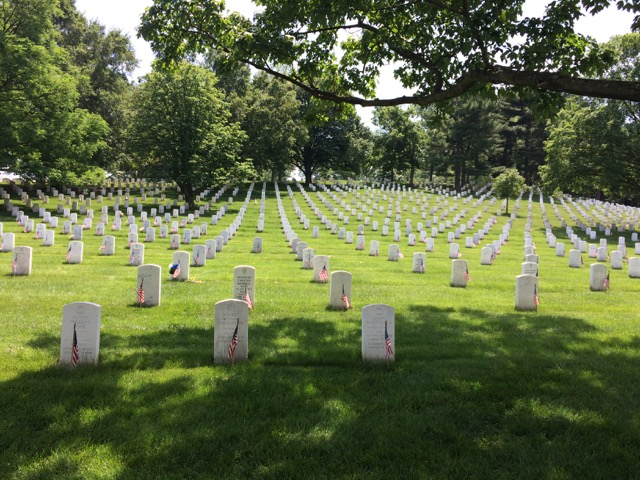 Memorial Day Reflections…
