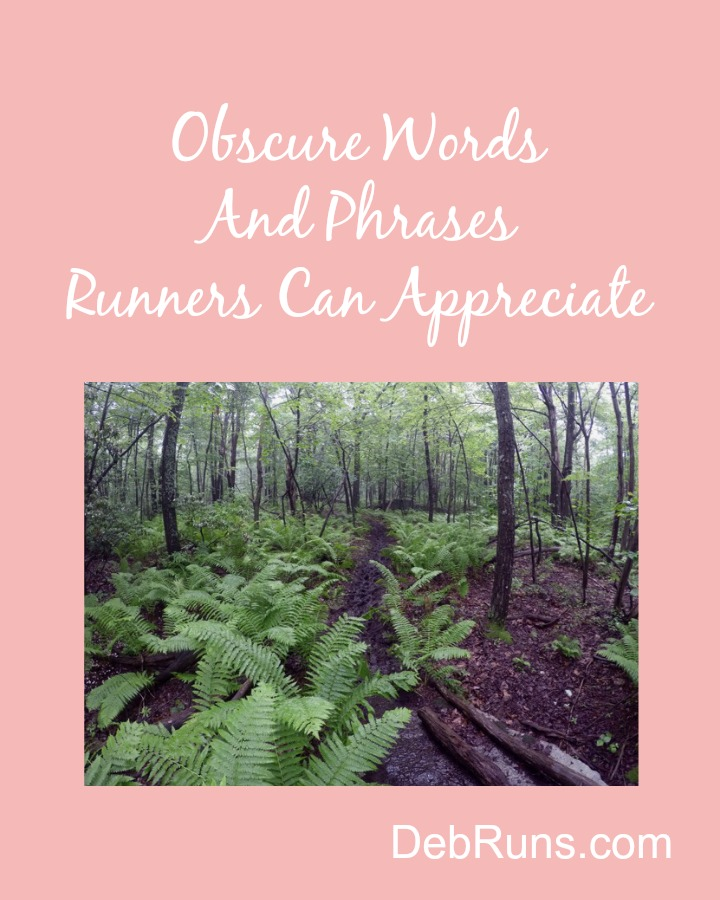 Obscure Words Runners Can Appreciate